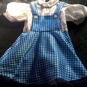 Vintage Rubies Girls S Dorthy Wizard of Oz dress